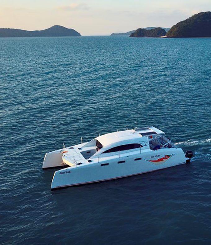 Coco Swinger Resorts Catamaran Day Cruise